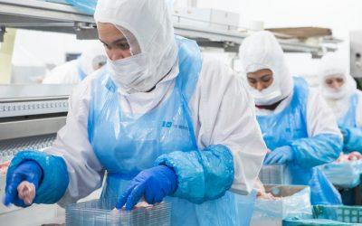 La importancia del trabajo temporal en la industria cárnica
